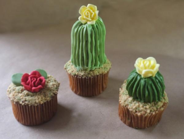House-Plant-Cactus-Cupcakes-5