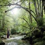 benoit-lapray-superheroes-in-solitude-nature-designboom-18